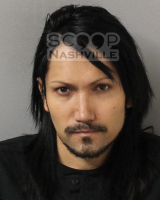 Ashley Purdy (MNPD)